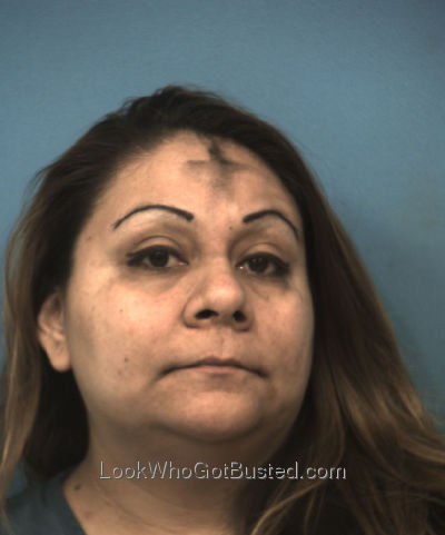 Apd booking photo database